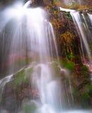 Поток с интенсивными цветами III стоковые фотографии rf