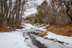 Поток с льдом Стоковые Изображения