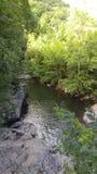 Поток Теннесси Стоковые Фото