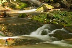 Поток, утесы и мох стоковые фотографии rf
