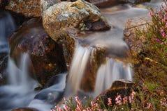 Поток Уэльс горы стоковые фото