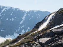 Поток холма горы с малым водопадом Стоковые Изображения RF