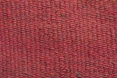 Поток цветов Стоковое фото RF