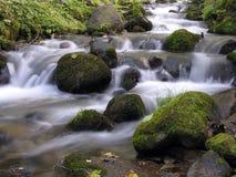 поток Стоковые Изображения RF