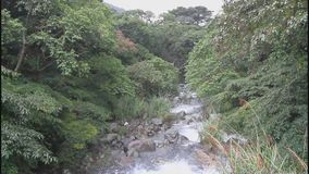 Поток Balian в Тайване видеоматериал