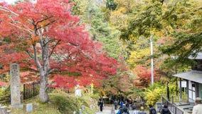 Поток Fudo и красный мост на держателе Nakano-Momiji Стоковое Изображение