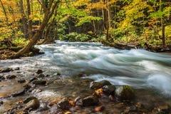 Поток Oirase в осени на национальном парке Towada Hachimantai в Aomori, Tohoku, Япония Стоковые Изображения