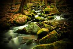 Поток Sembera Стоковое Изображение RF