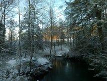 Поток Snowy стоковое фото rf