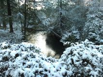Поток Snowy стоковая фотография rf