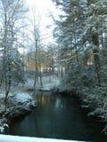 Поток Snowy стоковое изображение rf