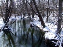 Поток Snowy Стоковая Фотография