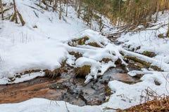 Поток Viraski Стоковое фото RF