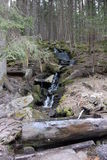 Поток Vydra бортовой, umavaÅ, чехия Стоковая Фотография RF