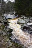 Поток Vydra, umavaÅ, чехия Стоковые Фото