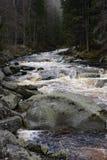 Поток Vydra, umavaÅ, чехия Стоковая Фотография