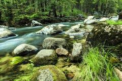 Поток Yosemite горы Стоковые Изображения RF