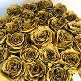 Потому что розы золота старые уникально Стоковая Фотография RF
