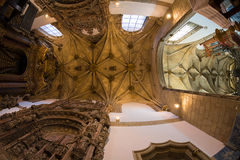 Потолок церков Стоковая Фотография