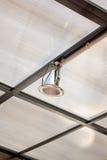 Потолочные лампы шариков галоида освещая с мягким теплым цветом тонизируют Стоковое Изображение