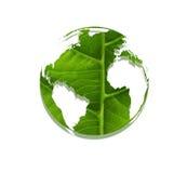 потребность принципиальной схемы дискредитирующая относящая к окружающей среде людская polluting рециркулирует валы почвы корней Стоковая Фотография