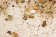 Потрескиванная белая глина в пустыне Стоковая Фотография