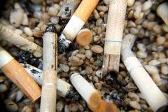 Потушите сигареты на камнях стоковое фото rf
