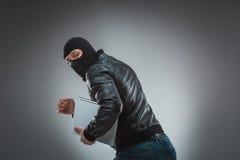 Похититель крадя портативный компьютер Изолировано на серой предпосылке стоковое фото