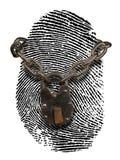 похищение удостоверения личности Стоковое Изображение RF