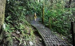 Поход в Коста-Рика Стоковое Изображение