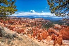 Поход образования песчаника национального парка каньона Bryce стоковые изображения rf