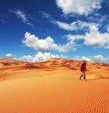 поход пустыни Стоковое фото RF