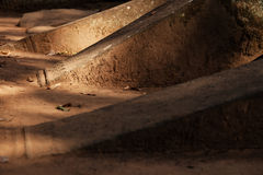 Похороненные штендеры стоковая фотография rf