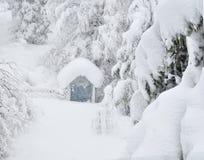похороненный снежок Стоковые Изображения RF