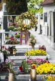 Похоронный цветок Стоковое Изображение RF
