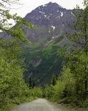 Поход Аляска Стоковые Изображения