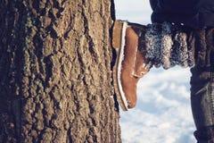 Поход зимы в глуши Стоковые Изображения