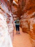 Поход каньона шлица Стоковое Изображение