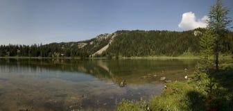 Поход солнечности в национальном парке Banff Стоковые Изображения RF