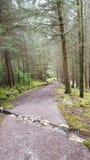 Поход Glencoe Стоковая Фотография RF