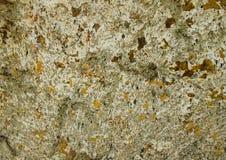 Поцарапанная стена Стоковые Фото