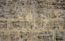Поцарапанная стена coquina каменная Стоковая Фотография