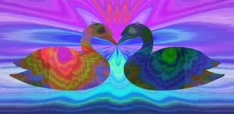 Поцелуй лебедей Стоковое Изображение RF