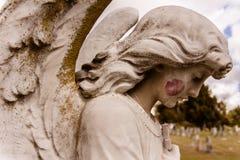 Поцелуй Анджела стоковое изображение