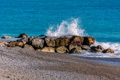 Поцелуй 6 моря стоковые изображения