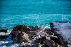 Поцелуй 4 моря Стоковые Фото