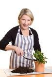 Почва женщины заполняя в цветочном горшке Стоковое фото RF