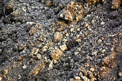 почва земли Стоковые Изображения RF