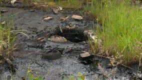 Почва покрытая с жидкостью черного смазочного минерального масла Загрязнение природы Повреждение окружающей среды сток-видео