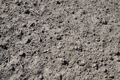 почва предпосылки сухая Стоковая Фотография
